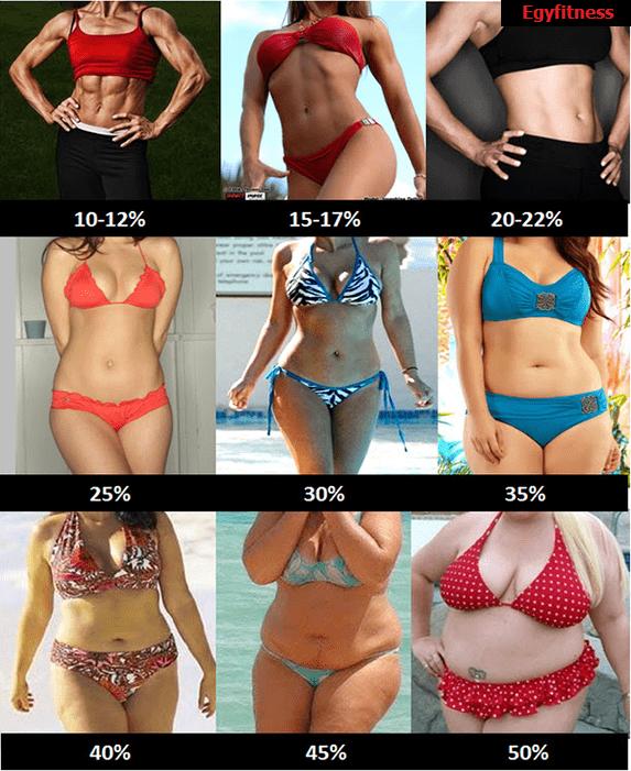 نسبة الدهون عند السيدات