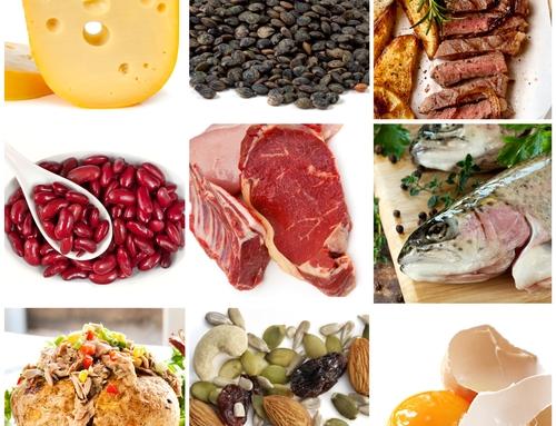 Protein Digestibility هضمية البروتين