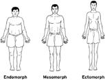 الرجيم و التمرين لكل نوع جسم أندومورف ميزومورف و أكتومورف